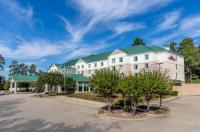 Hilton Garden Inn Houston/The Woodlands Image
